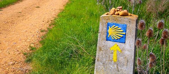 Pilgrimsvandring Caminon grupp 1-8/5 2020
